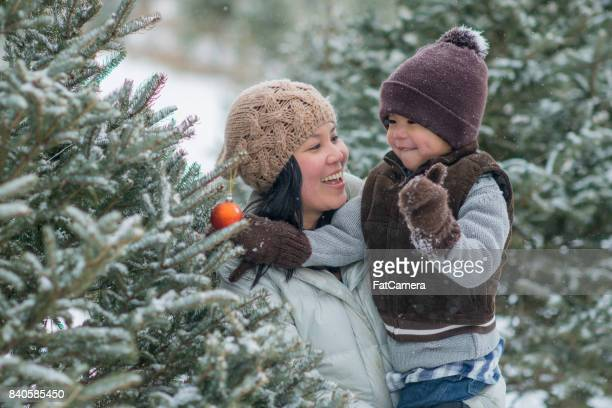 hanging an ornament - christmas tree farm stock pictures, royalty-free photos & images