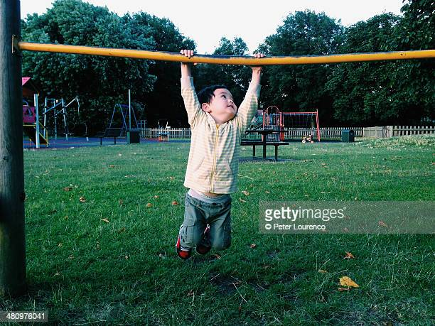 hanging around - peter lourenco stock pictures, royalty-free photos & images