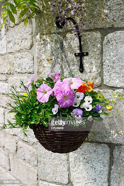 hanging basket of flowers on stone wall - hanging basket stock pictures, royalty-free photos & images