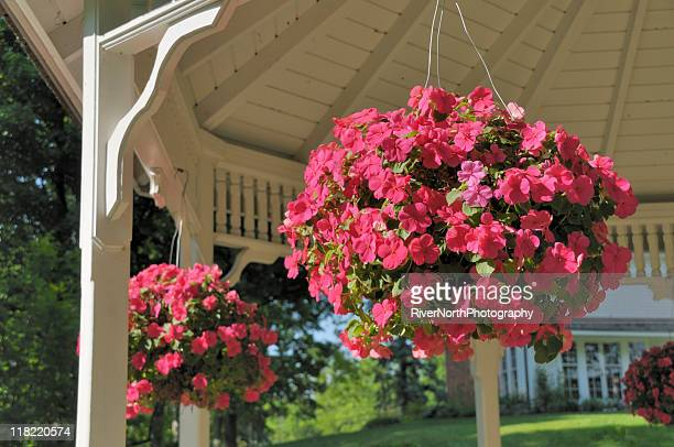 hanging baskets - hanging basket stock pictures, royalty-free photos & images