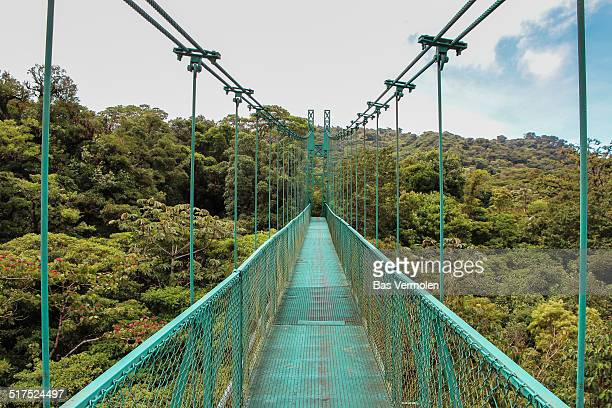 Hanging Bridge over Monteverde Cloud Forest