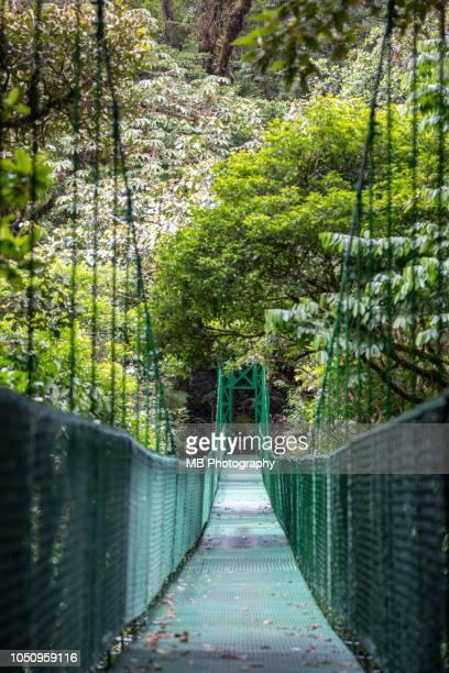 hanging bridge - lateinamerika stock-fotos und bilder