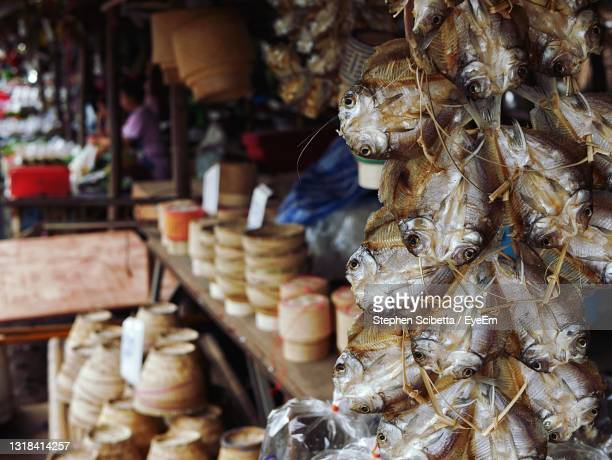 hanging dried fish for sale in market stall - 干物 ストックフォトと画像