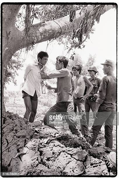 TAN TRU LONG AN SOUTH VIETNAM Hanging from a tree with a rope around his neck a suspected VietCong is beaten and interrogated by government soldiers...