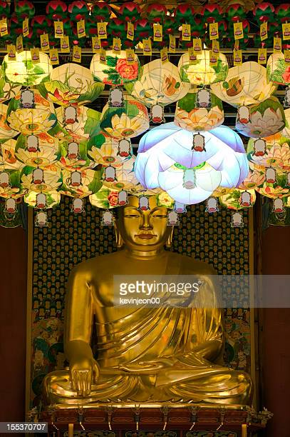 hanging lanterns for buddha's birthday - buddha's birthday stock pictures, royalty-free photos & images