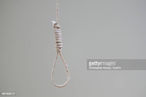hanging noose rope against white background - suicidio fotografías e imágenes de stock