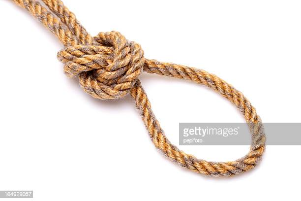 hanging noose rope - noose stock photos and pictures