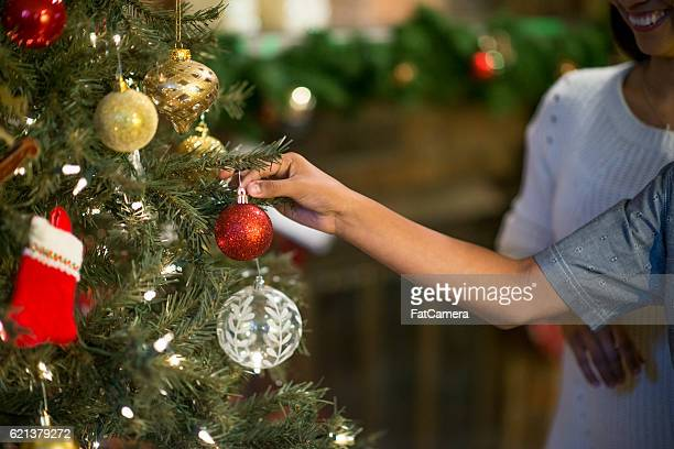 Hanging Ornaments on a  Tree