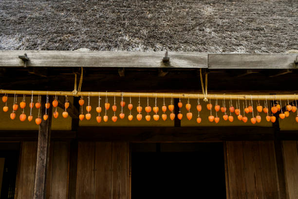 hanging persimmons to dry - 干し柿 ストックフォトと画像