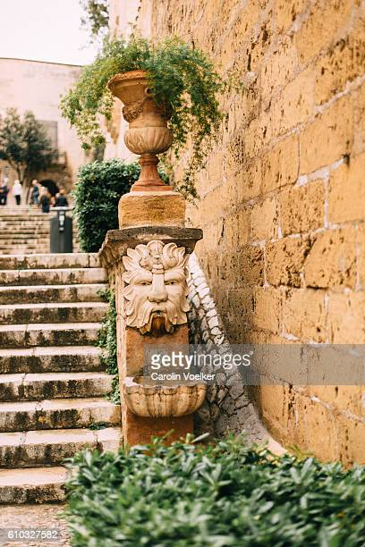 Hanging plant above a little fountain at the foot of stone stairs in Palma de Mallorca