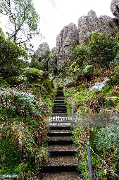 hiking trail stairs follow a path up to a mountain towards rock pillars made of solvsbergite. - mamelon photos stock pictures, royalty-free photos & images