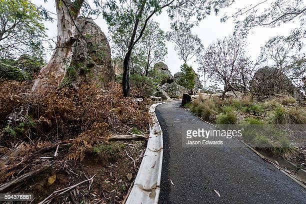 a walking path through a forest surrounding a rock pillar made of solvsbergite. - mamelon photos stock-fotos und bilder