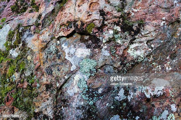 a lichen colony growing on the surface of a rock pillar made of solvsbergite. - mamelon photos stock pictures, royalty-free photos & images