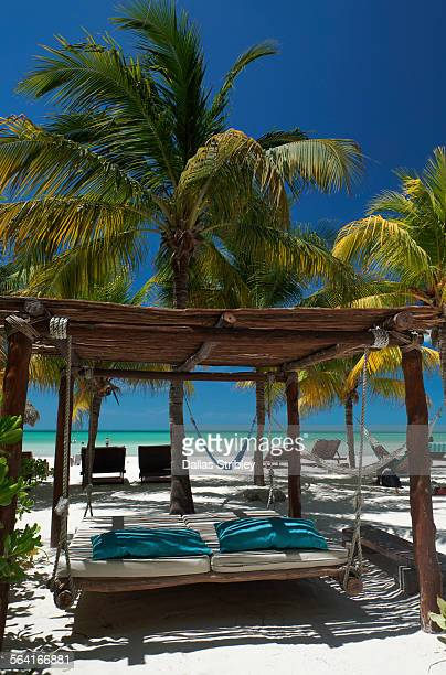 Hanging sun-bed and palms on the beach, Holbox