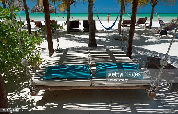 hanging sun-bed, and palms on the beach, holbox - isla holbox fotografías e imágenes de stock