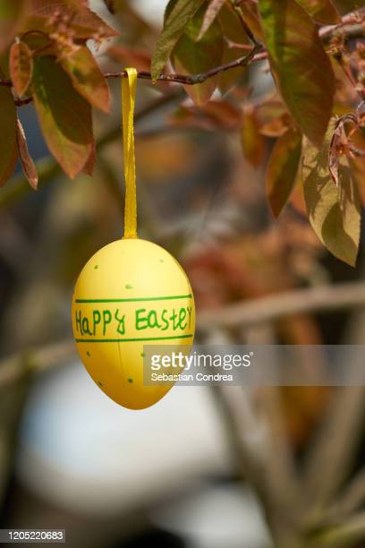 hanging yellow easter egg from a branch. - easter sunday stock pictures, royalty-free photos & images