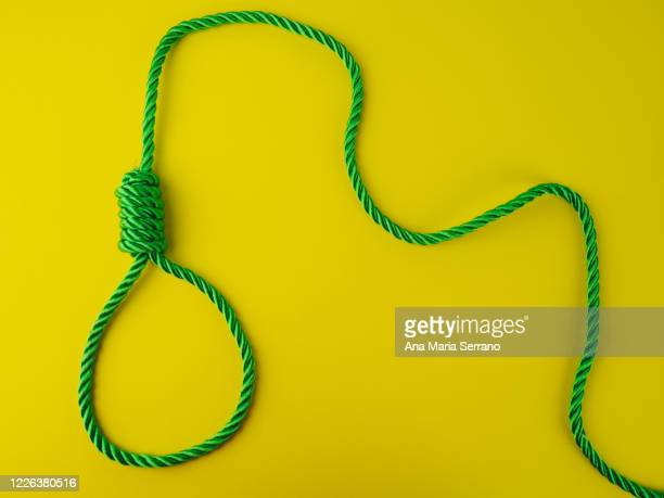 a hangman's knot on a yellow background - hanging gallows stock pictures, royalty-free photos & images