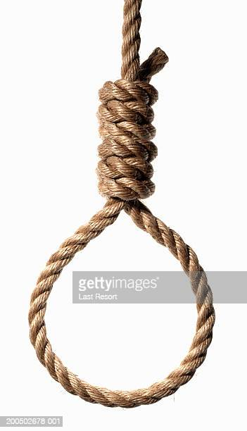 Hangman's noose, close-up