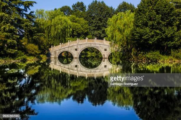 hangzhou - bridge over the lake - ponte ad arco foto e immagini stock