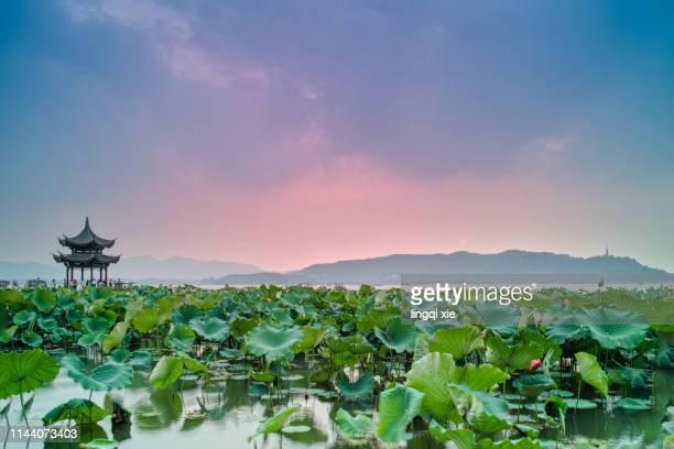 hangzhou jixian pavilion and gems mountain sunset scenery - 九月 ストックフォトと画像
