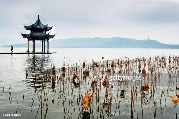 hangzhou west lake jixian pavilion and tourists - hangzhou stock pictures, royalty-free photos & images