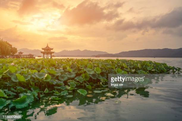 hangzhou west lake jixian pavilion sunset scenery - pavilion stock pictures, royalty-free photos & images