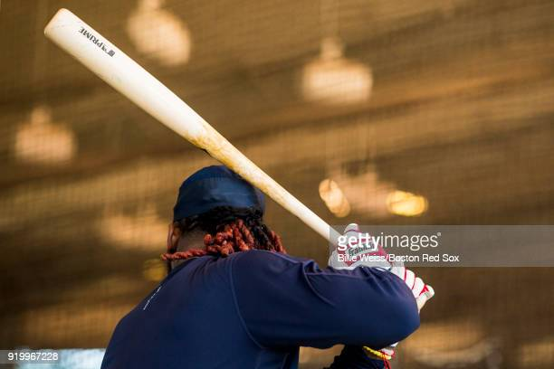 Hanley Ramirez of the Boston Red Sox takes batting practice in the cage during a team workout on February 18 2018 at jetBlue Park at Fenway South in...