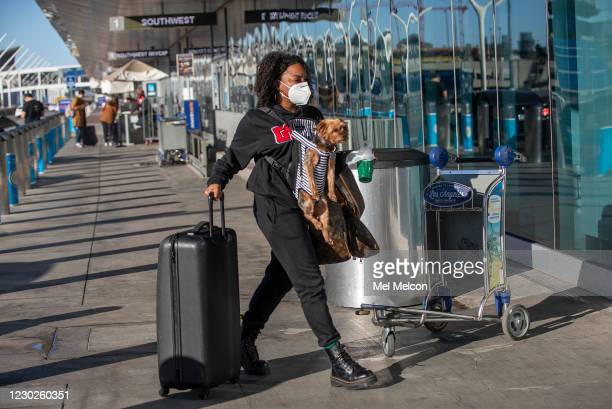 Hanna Dixon of West Hollywood, and her dog Pepper, a Yorkie, make their way into Southwest Airlines at LAX. Dixon was heading to Cleveland, Ohio to...
