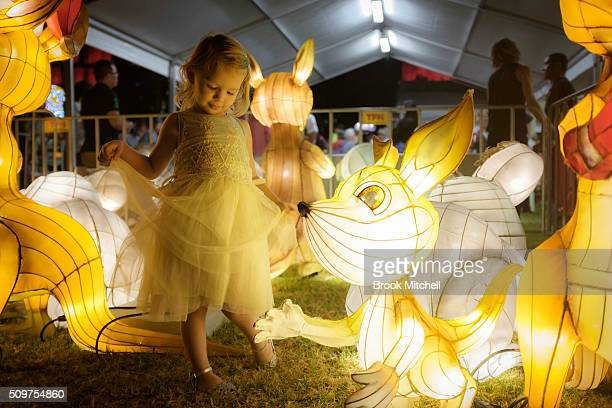 Hanna Hughes at the Chinese New Year Lantern Festival at Tumbalong Park on February 12 2016 in Sydney Australia The lighting of lanterns is a...