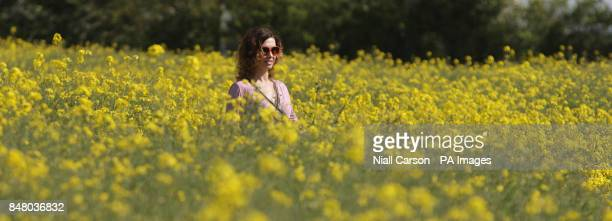 Hannah Andrews, from Dublin, walks in a field of oilseed rape crops near Balbriggan as the warm weather continues.