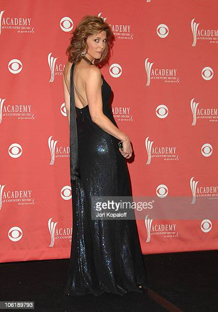 Hannah Storm during 42nd Annual Academy of Country Music Awards Press Room at MGM Grand Garden Arena in Las Vegas Nevada United States