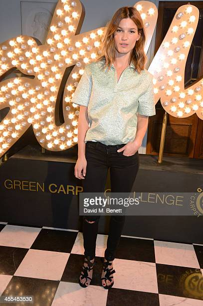 Hanneli Mustaparta attends The London 2014 Stella McCartney Green Carpet Collection during London Fashion Week at The Royal British Institute on...