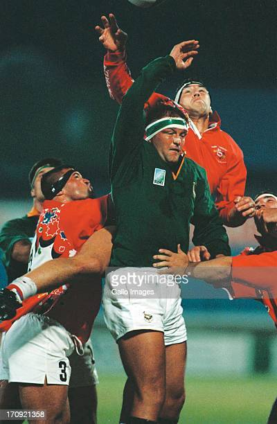 Hannes Strydom in line out during the Rugby World Cup match between South Africa and Canada on June 3 1995 in Port Elizabeth South Africa