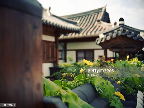 hanok - jeonju stock photos and pictures