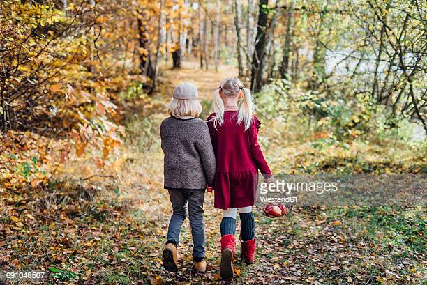 Hansel and Gretel, Boy and girl walking alone in the forest