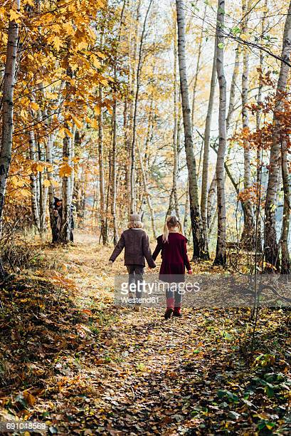 hansel and gretel, boy and girl walking alone in the forest, witch waiting behind tree - lane sisters stock photos and pictures