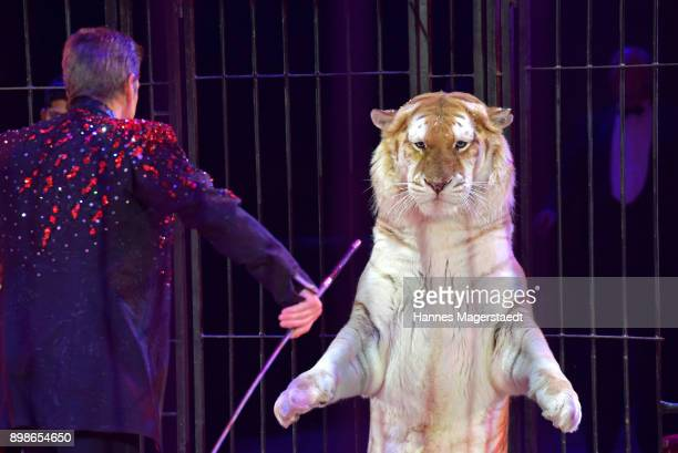HansLudwig Suppmeier performs with his tiger during Circus Krone celebrates premiere of 'In Memoriam' at Circus Krone on December 25 2017 in Munich...