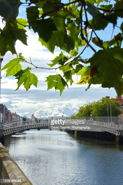 ha'penny bridge, dublin city, ireland - david soanes stock pictures, royalty-free photos & images