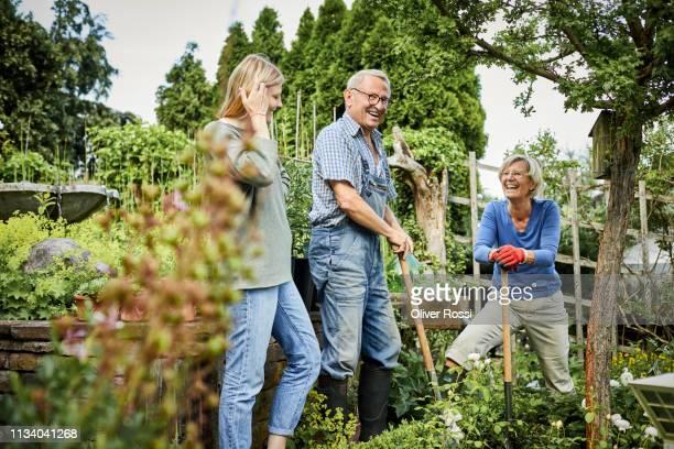 happy adult granddaughter and grandparents working in garden - pareja hombre mayor y mujer joven fotografías e imágenes de stock