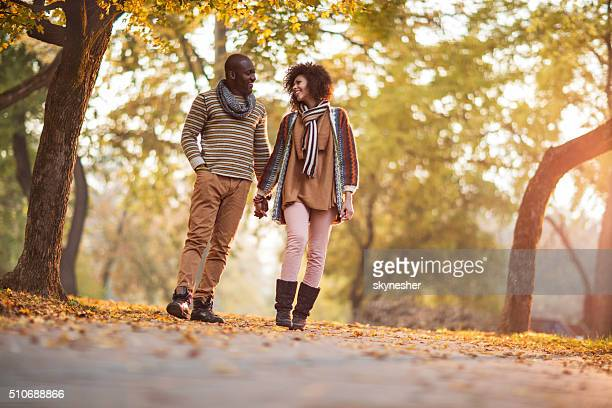 Happy African American couple walking in autumn park and communicating.