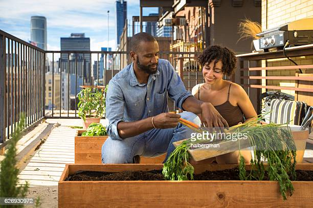 Happy African American Couple Working on Rooftop Garden