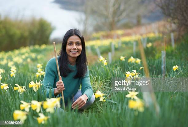 happy asian woman planting trees amongst daffodils, portrait. - planning stock pictures, royalty-free photos & images