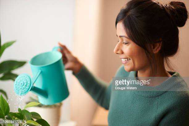happy asian woman watering plants with green watering can. - dougal waters stock pictures, royalty-free photos & images