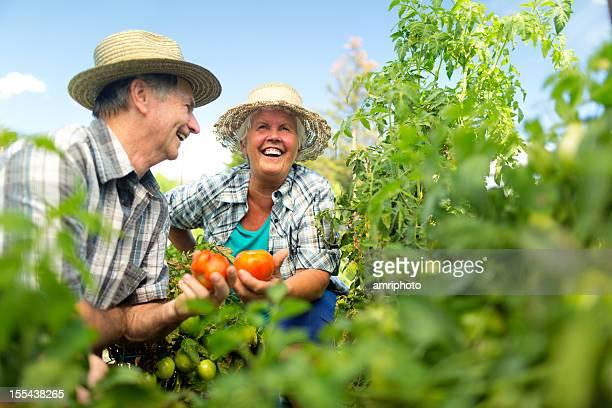 happy österreichische Rentner in Tomaten-Bereich