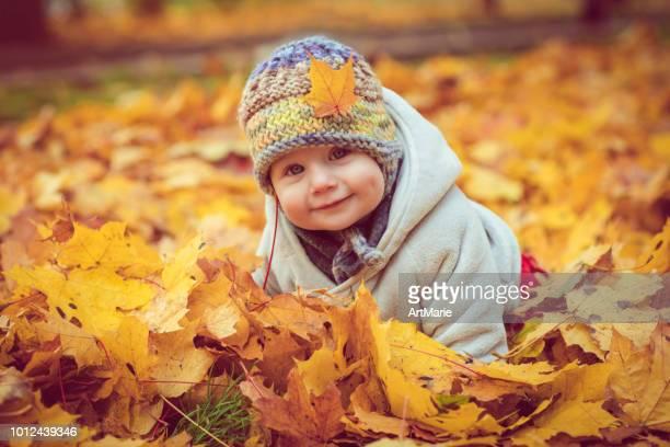 happy baby boy in autumn - de quatro imagens e fotografias de stock