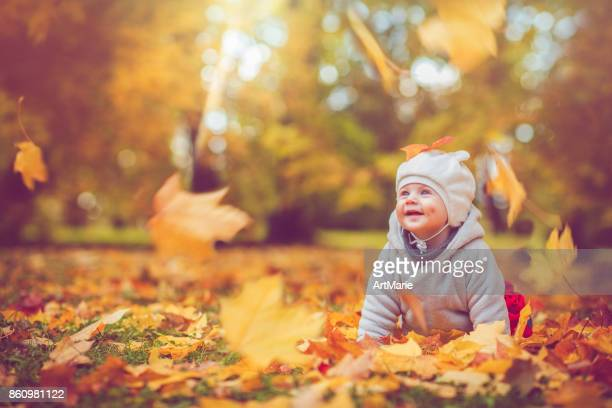 happy baby boy in autumn - autumn falls stock pictures, royalty-free photos & images