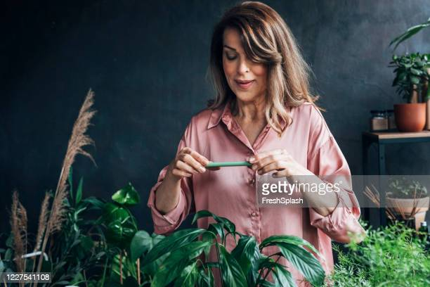 happy beautiful senior woman using her mobile phone at her indoor garden - green thumb stock pictures, royalty-free photos & images