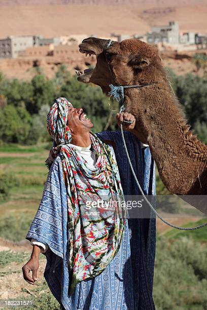 Happy berber and his camel sharing a joyful moment, Morocco