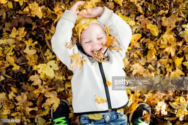 Happy boy among autumn leaves