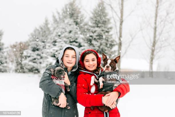 happy boy and girl with their dogs in snow storm